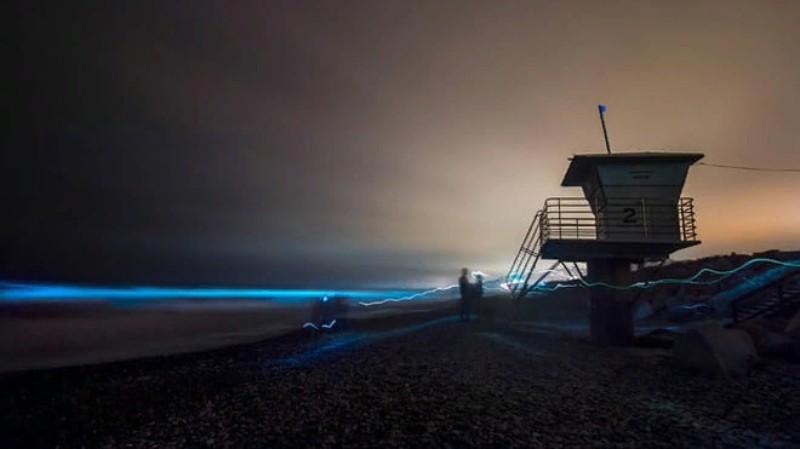 В Калифорнии начал светится океан