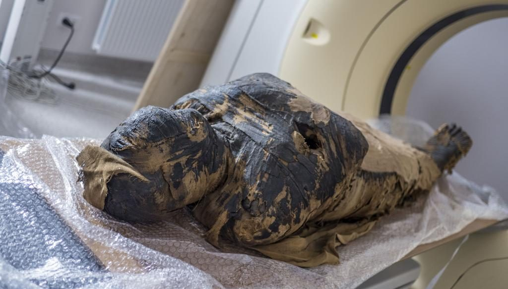 Найдена первая в мире египетская мумия беременной женщины