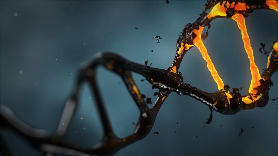 Найден «след» эпидемии коронавируса, случившейся 20 тысяч лет назад