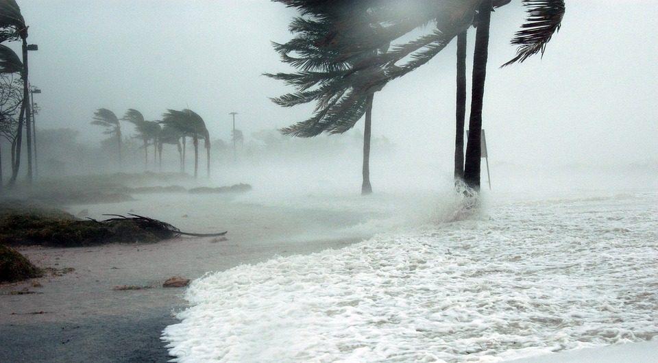 В Тихом океане образовался первый тропический шторм в 2021 году