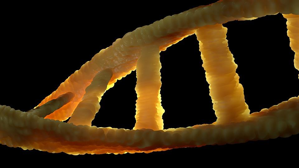 Выдающийся генетик мира продает свою ДНК