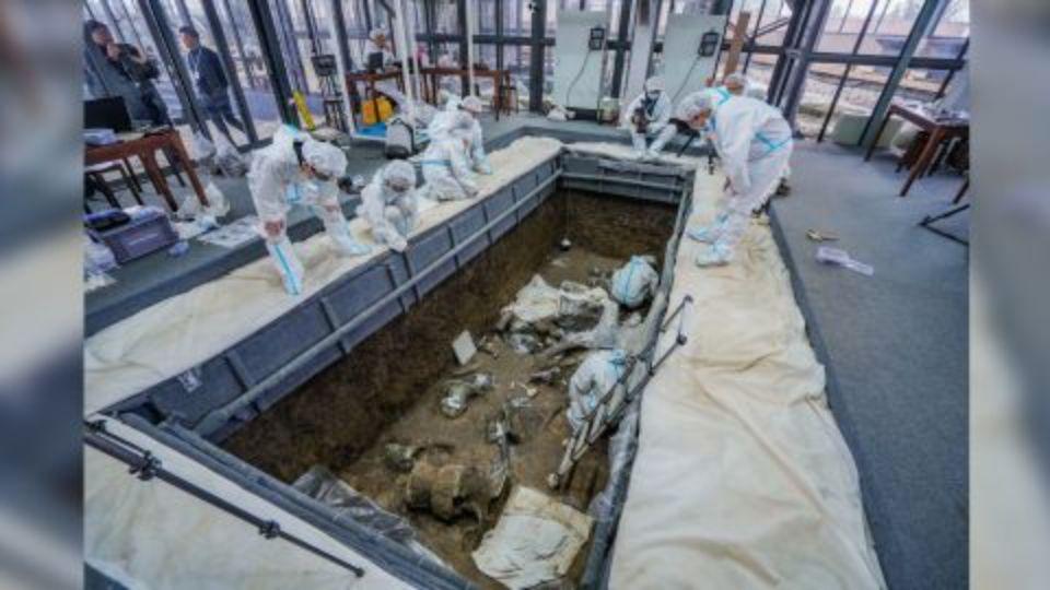 В Китае нашли ритуальные ямы с артефактами возрастом три тысячи лет