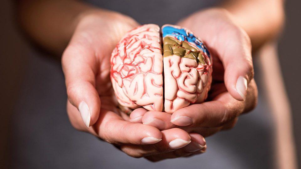 Названа причина возникновения распространенной болезни мозга