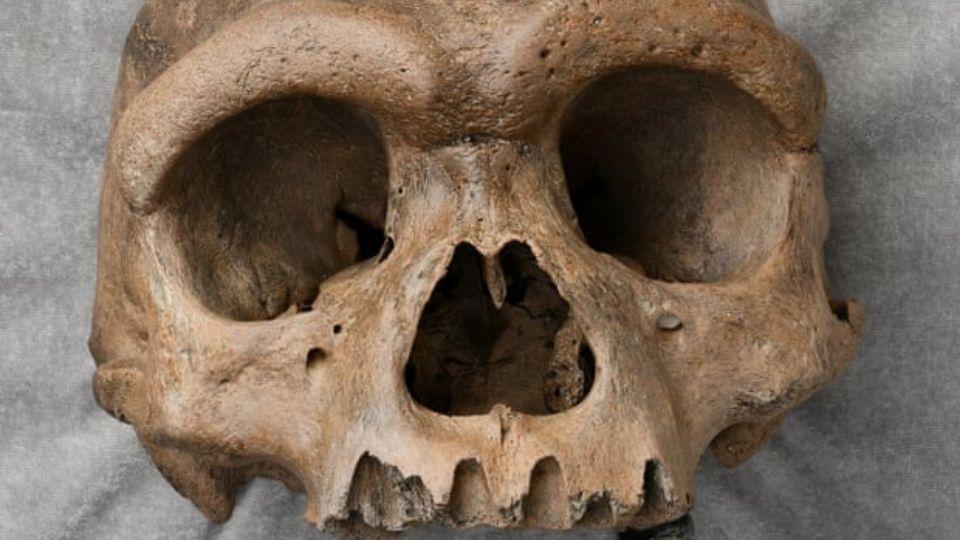 В Китае нашли череп неизвестного ранее науке древнего человека