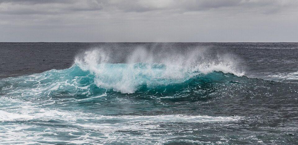 Найдена причина образования «мертвых зон» в Тихом океане