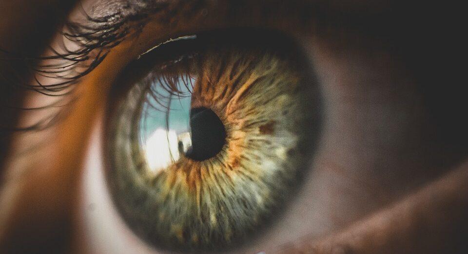 Диагностическое обследование органов зрения