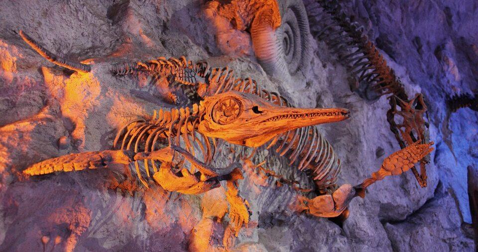 В Британии обнаружили «Помпеи Юрского периода»