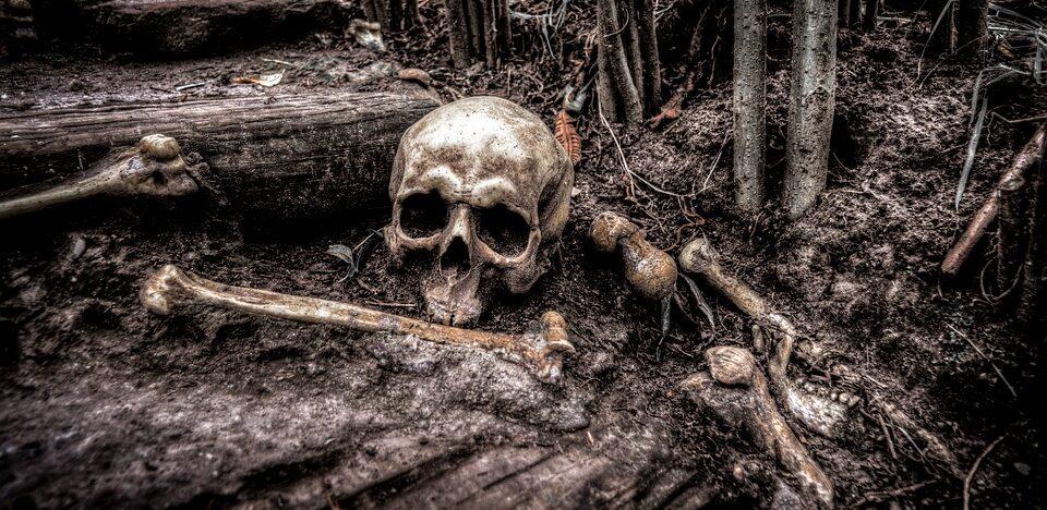 В Южной Корее обнаружили могилу «гиганта»