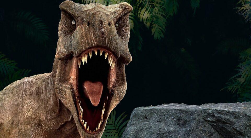 Палеонтологи выяснили, почему тираннозавры кусали друг друга за морды