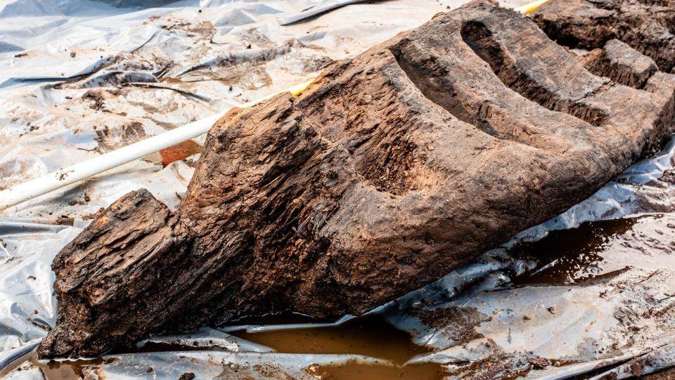 В болоте Ирландии нашли деревянного идола возрастом 1600 лет