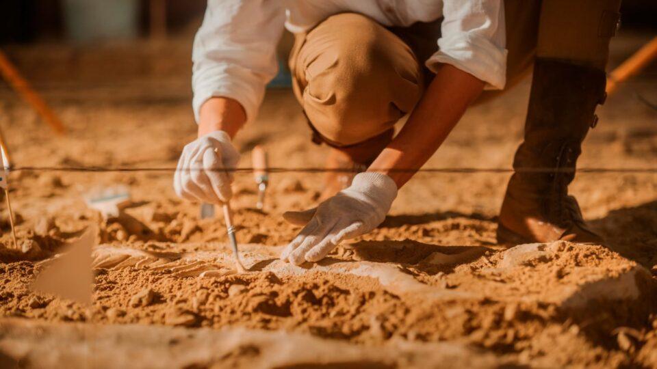 Найдены останки древнего воина со следами уникальной операции