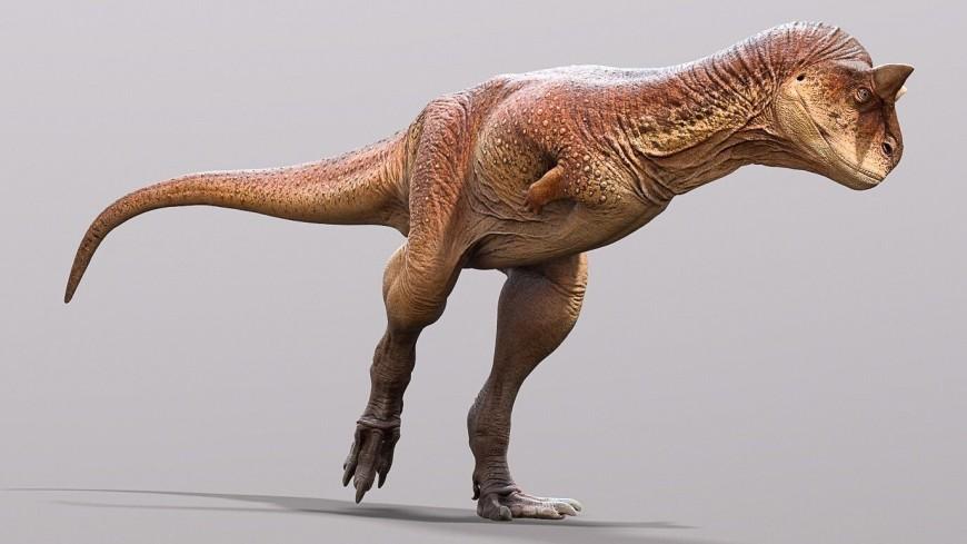 Палеонтологи восстановили внешний вид «плотоядного быка», жившего в эпоху динозавров