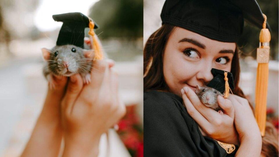 Девушка пришла на выпускной вместе со своей крысой