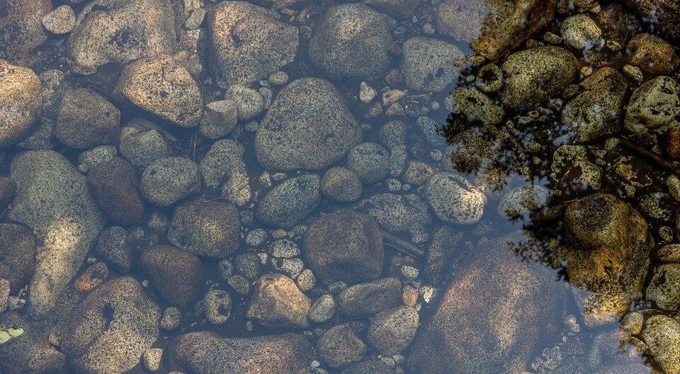 В Англии на дне водоема обнаружили саркофаг бронзового века