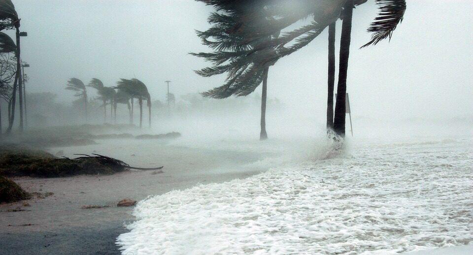 Климатологи предупредили об увеличении количества природных катастроф