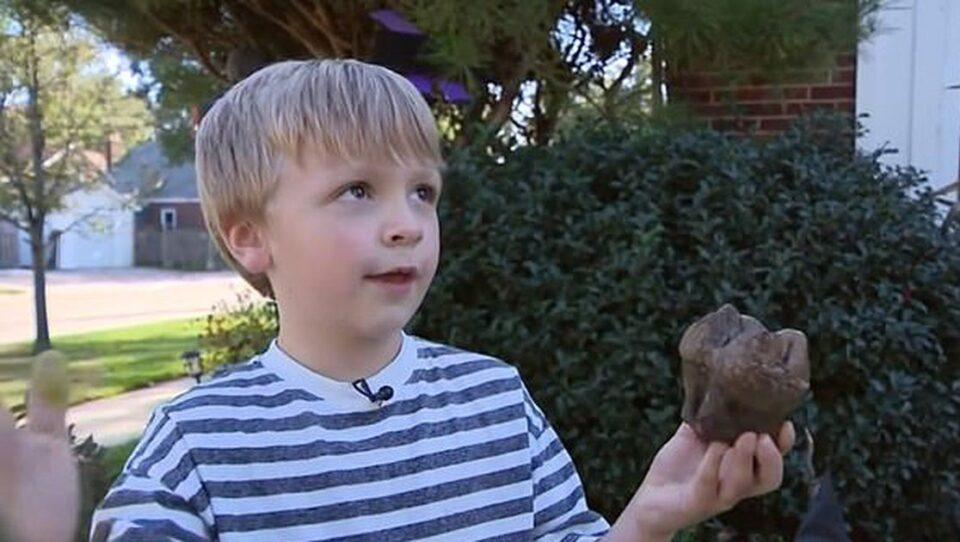 Мальчик нашел зуб возрастом 12 тысяч лет, принадлежащий мастодонту