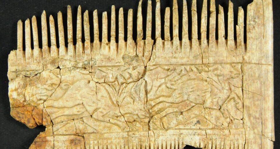 В Баварии нашли гребень из слоновой кости возрастом 1500 лет