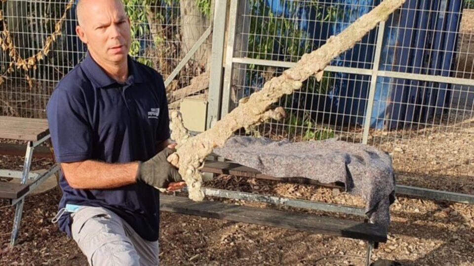 У берегов Израиля нашли меч крестоносца: находке 900 лет