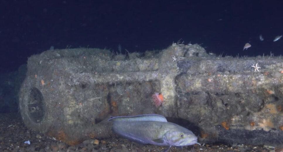 В США обнаружили остатки корабля, пережившего две мировые войны