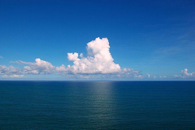 Ученые: Содержание ртути в Мировом океане повысилось в 3 раза