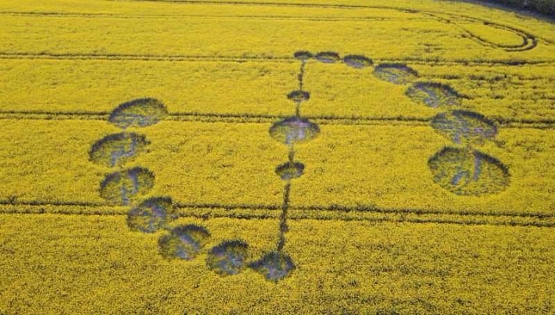 В Англии обнаружен таинственный рисунок на поле