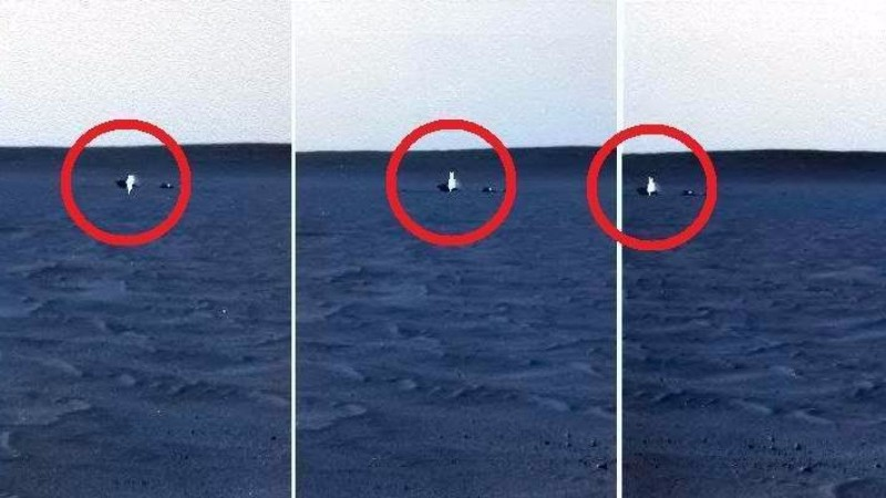На Марсе обнаружили парящий сияющий объект