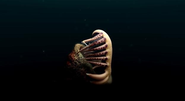 В Канаде обнаружен древний червь-монстр с большими зубами
