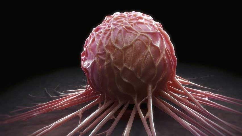 Раковые клетки могут впадать в спячку, чтобы избежать химиотерапии
