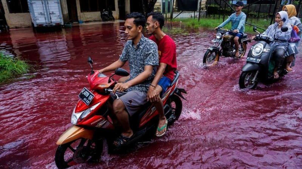 В Индонезийской деревни по улицам бегут «кровавые реки»: видео