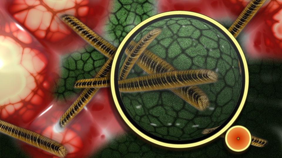 Ученые: к 2050 году супербактерии будут убивать 10 млн человек в год