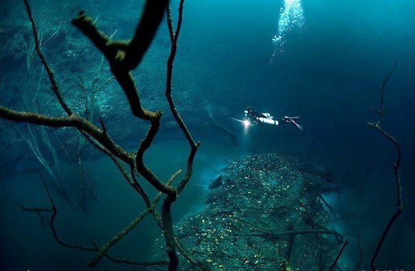 Тысячи гор найдены на дне океана