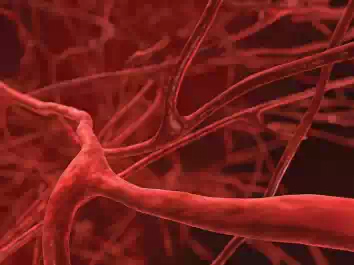 Учёные научились создавать кровеносные сосуды с помощью 3D-печати