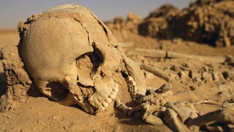 Ученые заявили, что человечество в будущем полностью вымрет