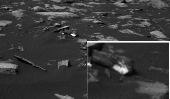 На Марсе поймали белого кролика