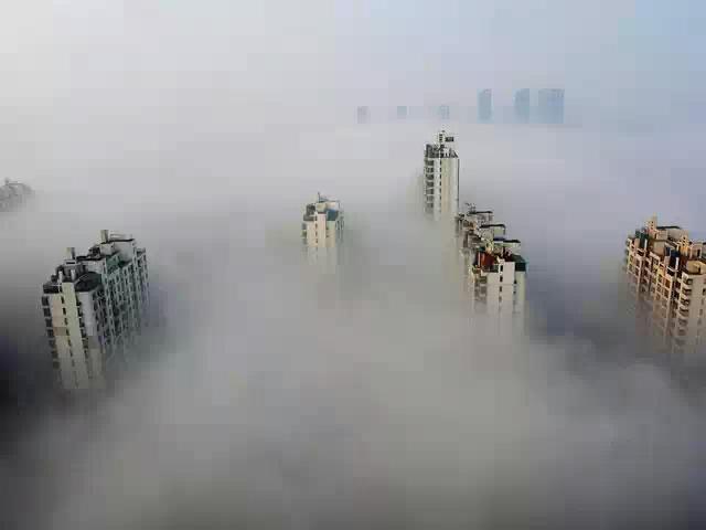 Аутизм и шизофрения возможно возникают из-за загрязненности городов