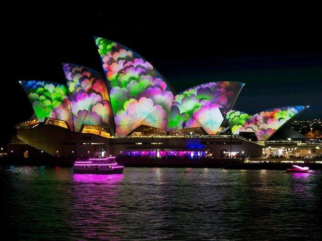 Сидней Яркий Фестиваль (15 Фото)