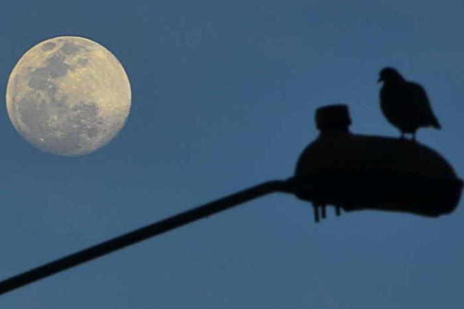 Слетать на Луну можно за 150 тысяч долларов