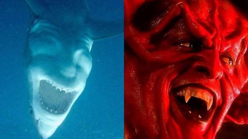 Необычный ракурс превратил акулу в «смеющегося дьявола»