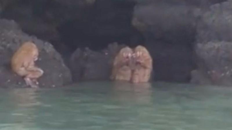 В Таиланде группа туристов наткнулась на пещерных троллей