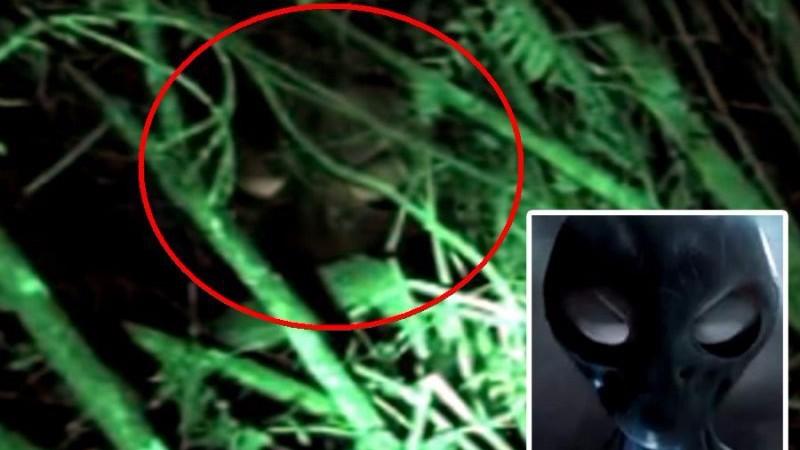 В Колумбии на горе Пенья Хуайка обнаружили пришельца