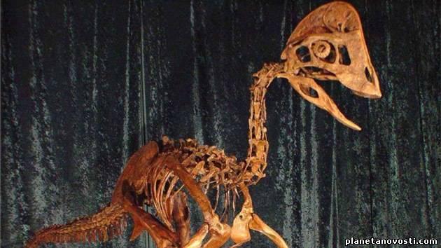 Американские ученые обнаружили динозавра по прозвищу «курица из ада»