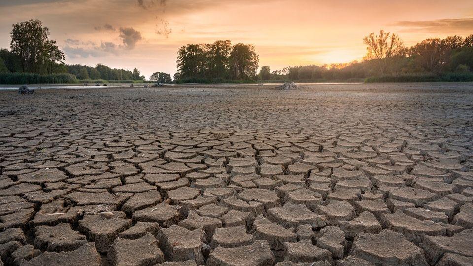 Калифорния готовится к мегазасухе: жителей просят ограничить потребление воды