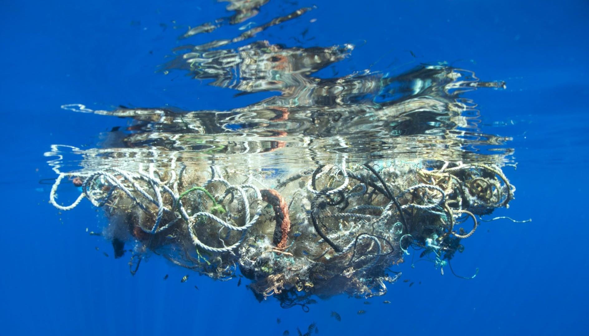 К 2050 году в океанах будет больше пластмассы, чем рыбы