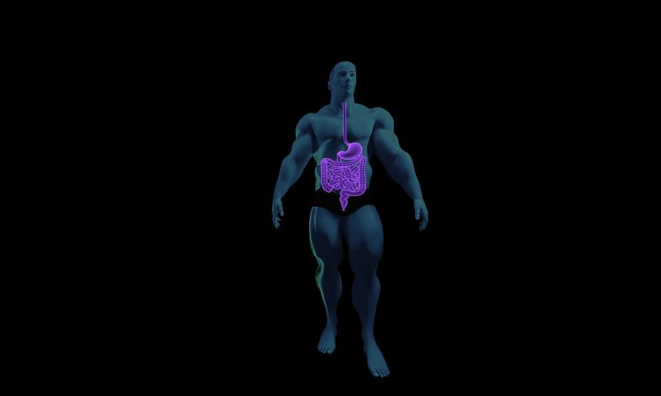 Заражение кишечника паразитами – симптомы, способы лечения