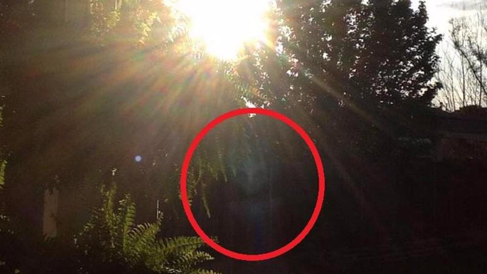 Пожилая женщина запечатлела у себя в саду пришельца