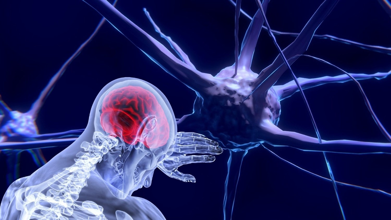 Названы факторы, резко повышающие риск развития инсульта