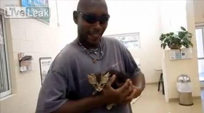 Американец разрезал пикап, чтобы достать котенка