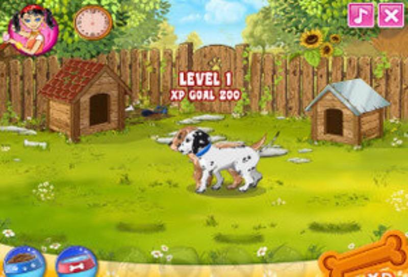 Интересная игра с животными