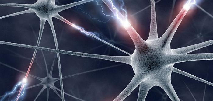 Ученые узнали почему сон улучшает память