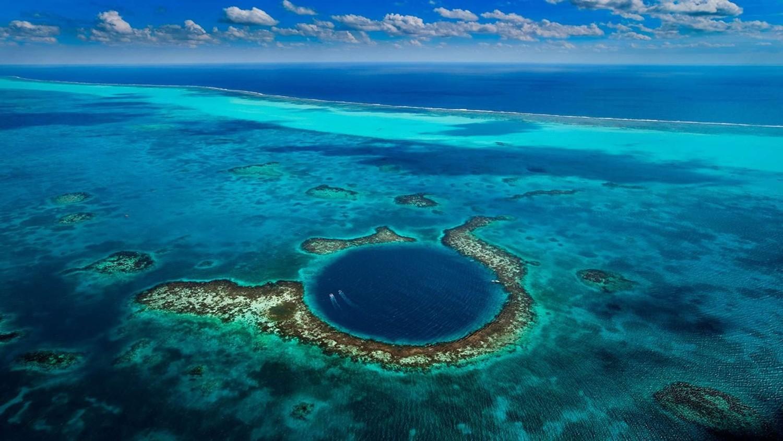 В Мировом океане катастрофически быстро падает уровень кислорода